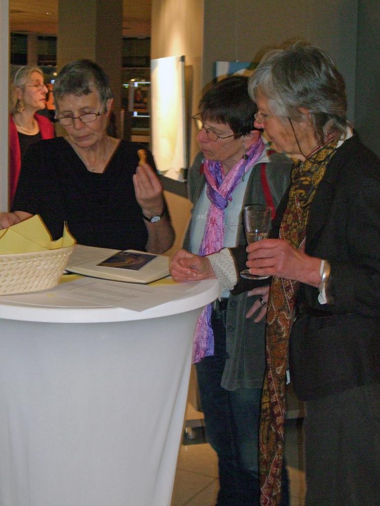 Ausstellung Wiesbaden 2016 Bild DSCF1373