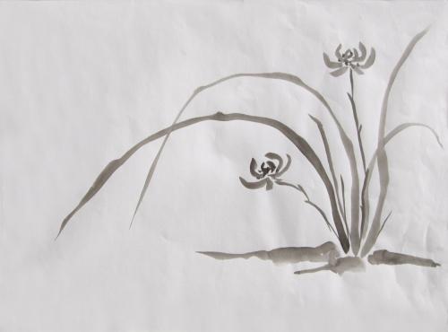 Blühende Pflanze jap., Japanische Tusche auf Papier