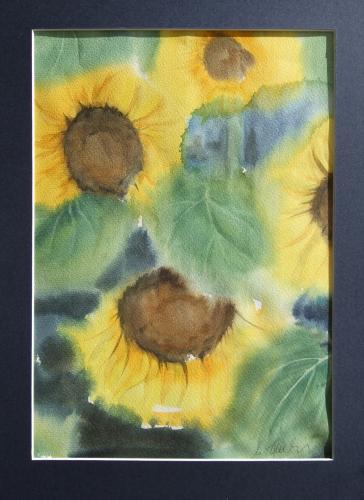 Sonnenblumen 2, Aquarell (verkauft)