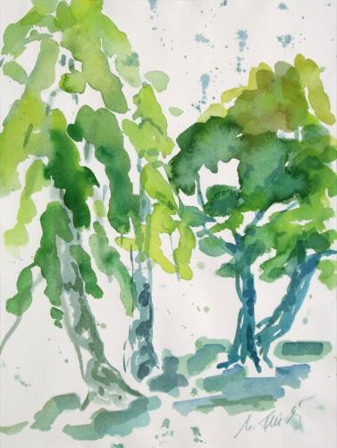 Birken im Regen, Aquarell